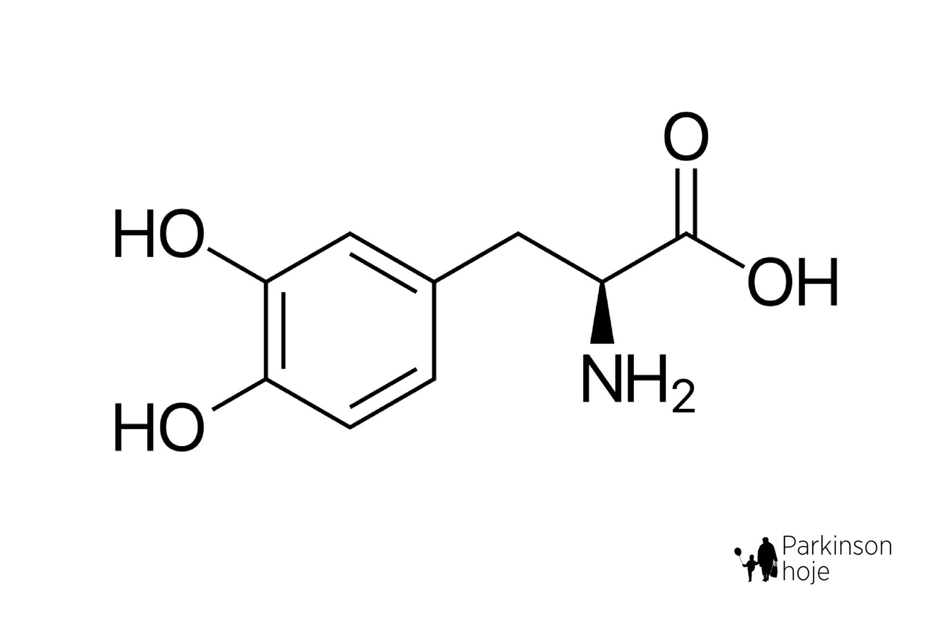 levodopa, a medicação mais eficiente para a doença de Parkinson